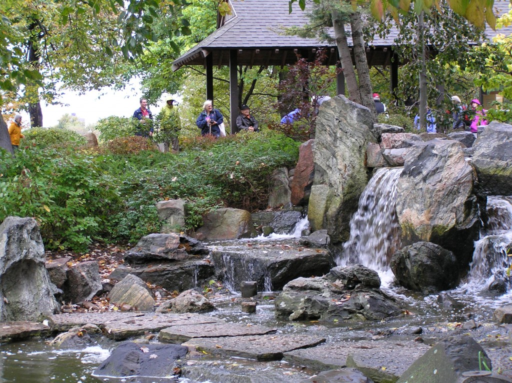 This is the garden's waterfall with the pavilion behind it. It was the end of the day and we were all admiring the work that was accomplished.