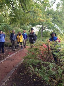 Karen, Mr. Kobayashi and participants listen to Greg Kitajima summarize the pruning goals for an area of Euonymus alatus.